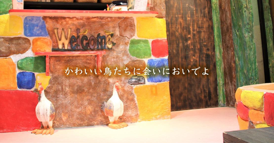 9月25日〜10月31日まで店舗改装に伴い休業とさせていただきます