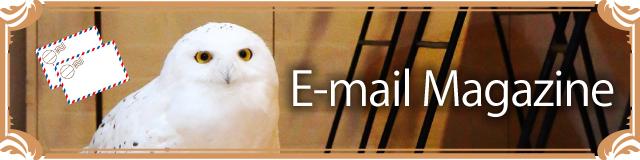 鳥のいるカフェメールマガジン