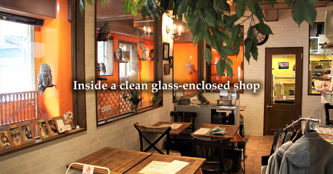 Inside a clean glass-enclosed shop