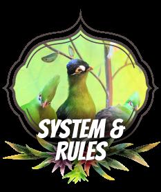 系统 规则