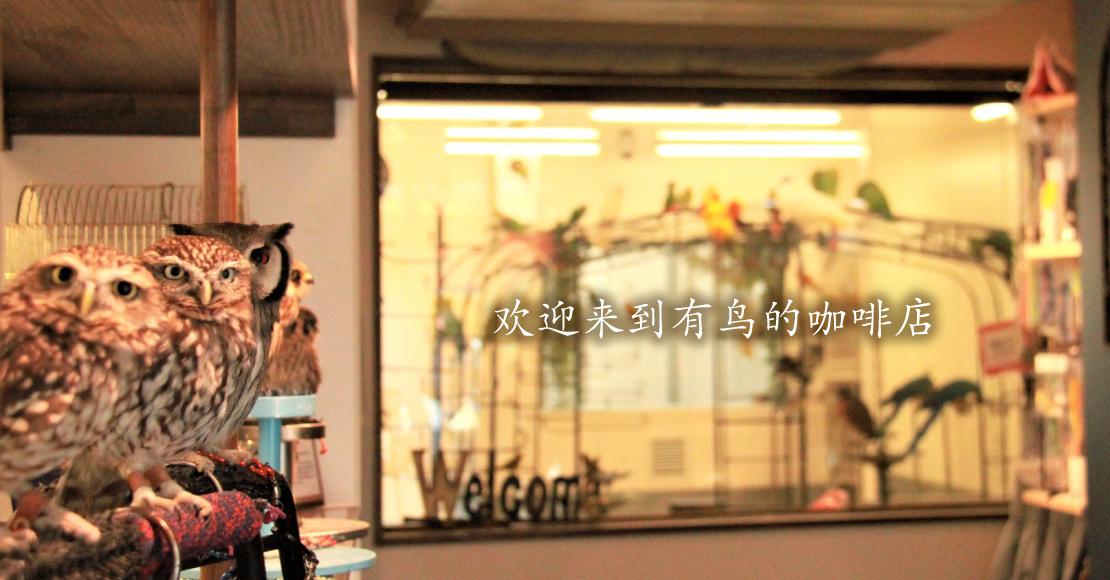 鳥のいるカフェ千駄木店へようこそ