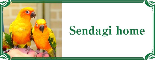 toricafe sendagi shop