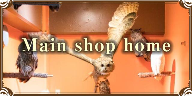 toricafe yanaka shop
