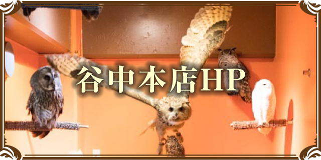 鳥のいるカフェ谷中本店HPへ
